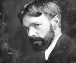 258_d h lawrence